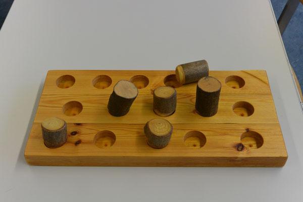 Ein Suchspiel: Es besteht aus einer Holzplatte, in die Löcher gebohrt wurden, in denen Futter versteckt werden kann. Für jedes Loch gibt es ein dickes, glatt geschliffenes Aststück, mit dem das Loch verschlossen werden kann.