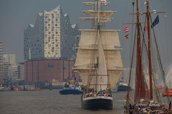Segler vor der Elbphilharmonie, Hamburg, Deutschland