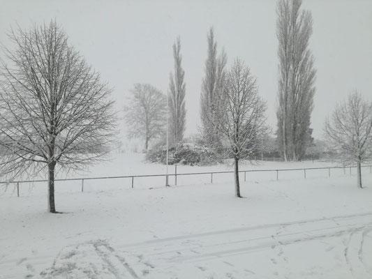 Nachdem unser geplantes Osterfeuer am 31.03.2018 buchstäblich im Schnee versunken ist...
