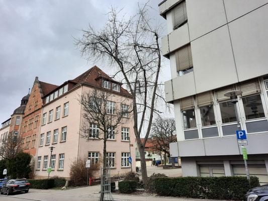 Rechts das Gebäude der Grundschule, links das SBBZ mit Rektorat und Verwaltung.