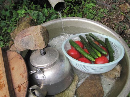 沢の水でお茶や野菜を冷やします。※イノシシに注意