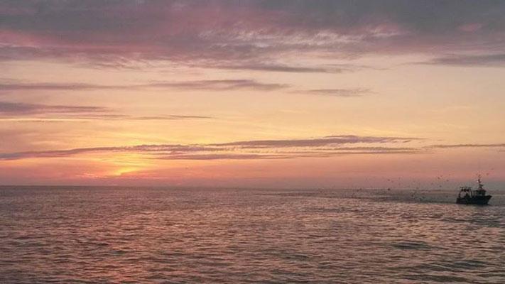 Coucher de soleil Baie de Somme