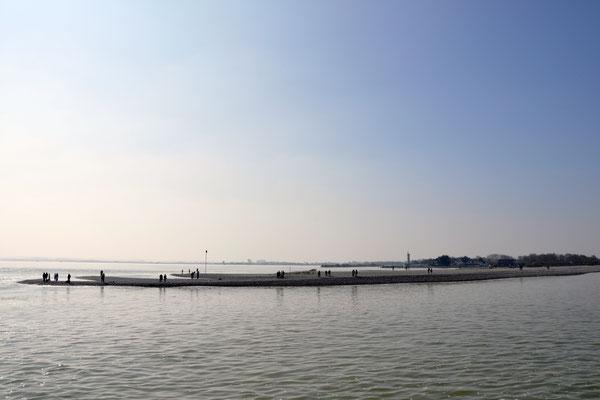 Promenade en bateau - Baie de Somme
