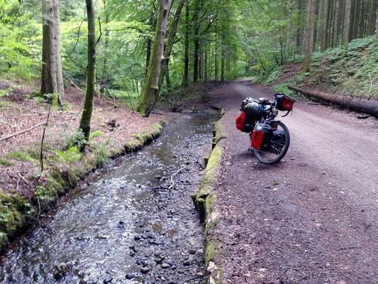 Radweg aus Vejle heraus