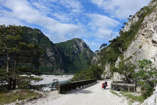 Der Tagliamento (Oberitalien), ist der bedeutendste der letzten Wildflüsse der Alpen