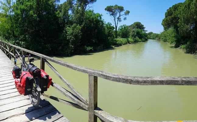 schöner Radweg im Naturschutzgebiet vor Lido di Classe, Pineta di Classe.