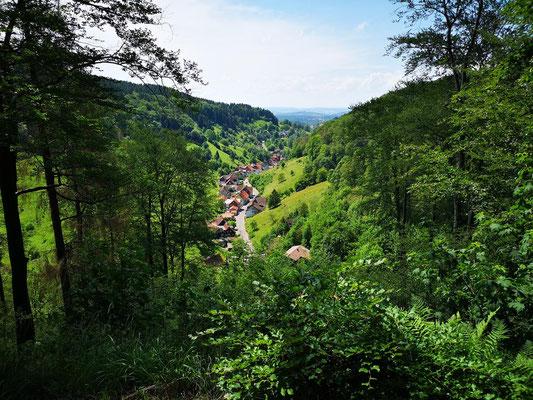 Blick auf Lerbach, Osterode am Harz