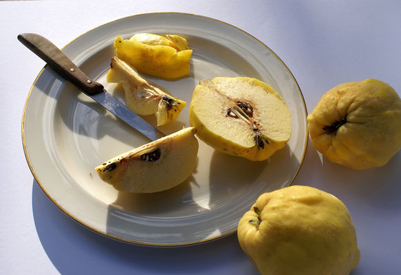 Erhard Löffel - Harte Früchte