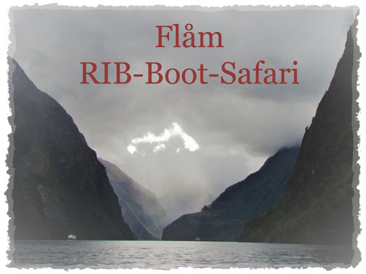 Flåm-RIB-Boot-Safari