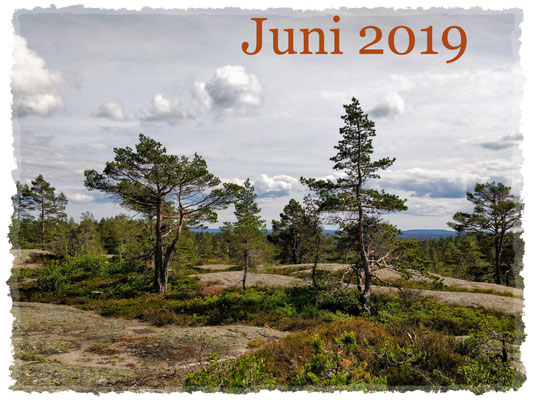 Juni 2019
