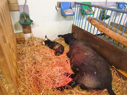Camilla mit ihrer Erstgeborenen Christa