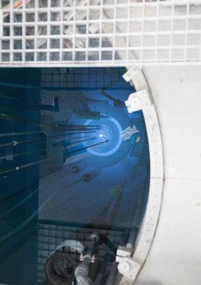 Ruben Gutzat - Reactor #3