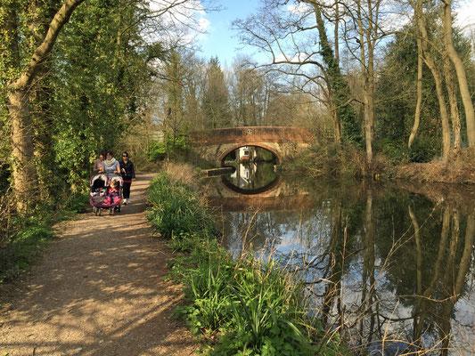 Pat Swanberg – Canal Bridge