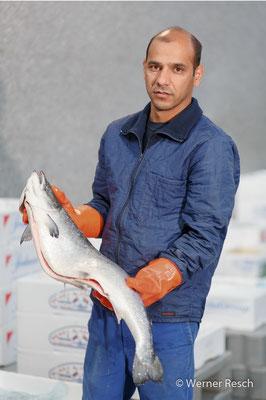 Massud, Fischverkäufer Moby Dick