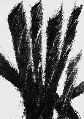 Grafit Zeichnung 5 Thomas Autering