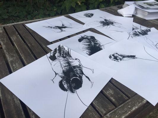 Ausstellung KUNSTRASEN Zeichnungen Thomas Autering