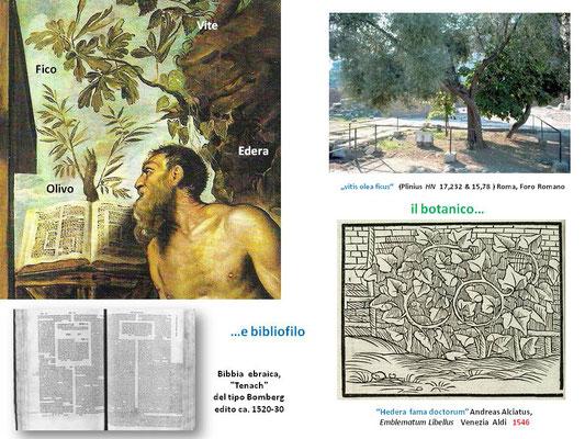 Tav.V a)Jacomo Tintoretto Girolamo (dettaglio con piante simboliche le bibbia ebrea) Venezia Gallerie dell'Accademia b) Bibbia ebrea Tenach, tipo Bomberg ca. 1520-30