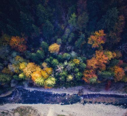 Herbstlicher Drohnenflig