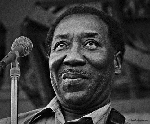 the Funky Soul story - Muddy Waters 09