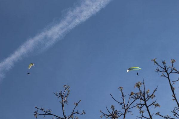 777 und Ozone