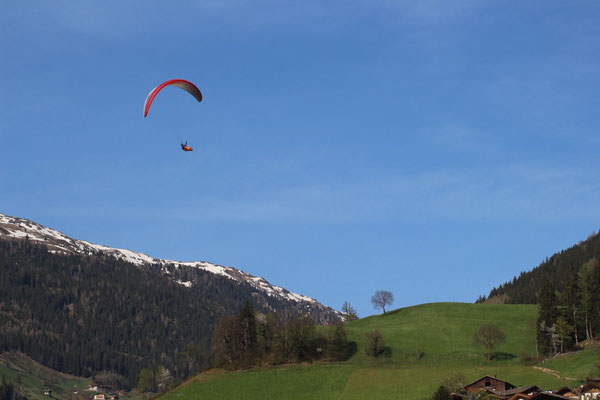 Ozone Alpina