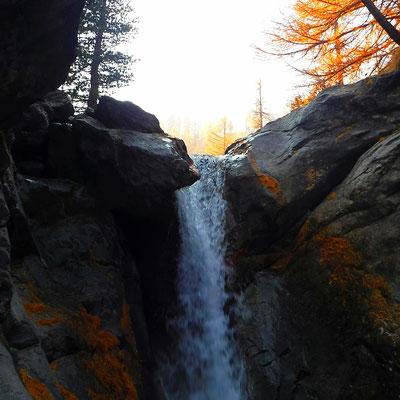 canyon d'automne