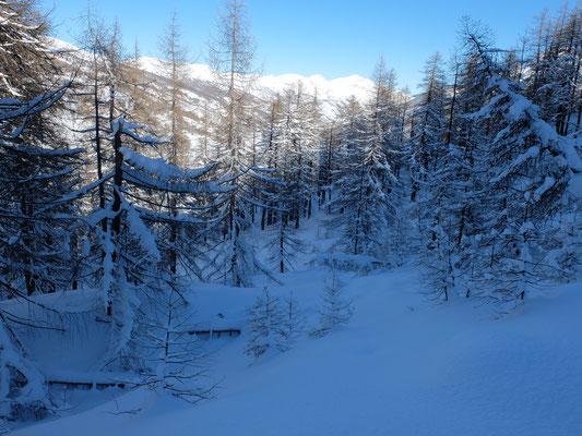 rando randonnée raquette briançon avec le bureau montagne visa trekking