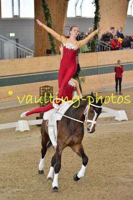 Gschwandt (AUT); Pferd: Lord; Longe: Katharina Auer