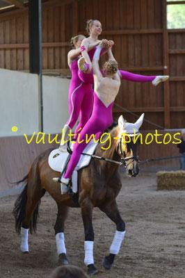 Bendestorf I; LV: Hannover; Pferd: Robin Hood; Longe: Meike König