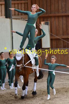RVV München-Daglfing III; LV: Bayern; Pferd: Prokopp's Pole Position; Longe: Talitha Mehnle