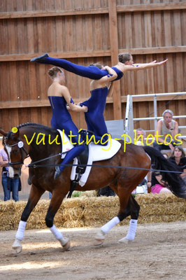 Diek-Bassum I; LV: Hannover; Pferd: Culcha Candela R; Longe: Sybille Schumacher