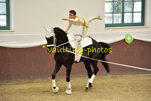 HH_Wentorfer RV Junior I; LV: Hamburg; Pferd: Alpha 89; Longe: Justina Hildebrandt