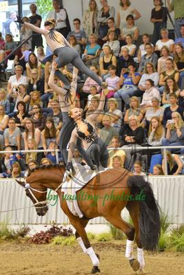 Gut Stockum I; LV: Weser-Ems; Pferd: Lakshmi; Longe: Tim-Randy Sia