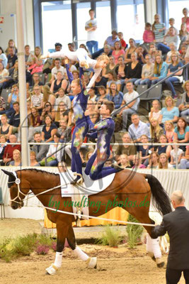 RFZV St.Herne I; LV: Westfalen; Pferd: Lago Maggiore; Longe: Stefan Lotzmann