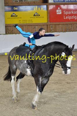 Gestüt am Wilisch I; Pferd: Wacek; Longe: Angela Linnemann