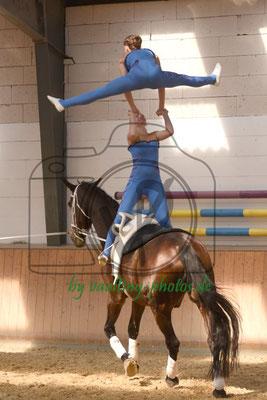Iden I; Pferd: D'artangnon; Longe: Christiane Stachok