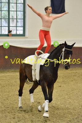 VV Köln-Dünnwald e.V.; LV: Rheinland: Pferd: Picardo 13; Longe: Ellen Ohoven