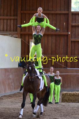 Timmel I; LV: Weser-Ems; Pferd: El Maron; Longe: Heike Janssen