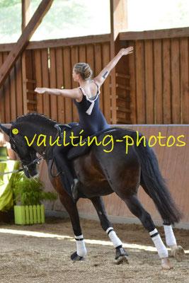 Nutteln I; LV: Schleswig-Holstein; Pferd: Dressage Damereus; Longe: Mareike Thies-Hahnn;