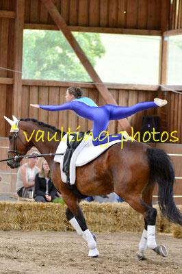 Schenkenberg III; LV: Sachsen; Pferd: Chakira; Longe: Melanie Peglow