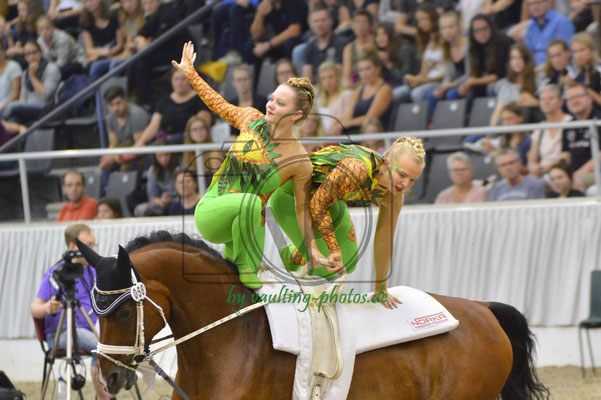 VV Köln-Dünnwald II; LV: Rheinland; Pferd: Holiday on Ice; Longe: Alexandra Knauf