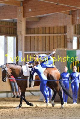 SSZ Liebertwolkwitz I; Longe: Franziska Kugeler-Meyer; Pferd: Lex Last Lotus
