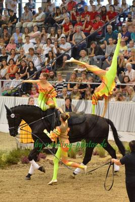 RV Nordheim I; LV: Baden-Württemberg; Pferd: Hamphrey Bogart 6; Longe: Andrea Blatz