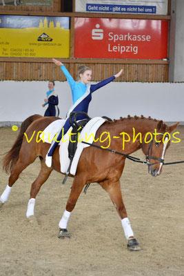 Leipzig-Knauthain II; Pferd: Don Alfredo; Longe: Anna Wiesner