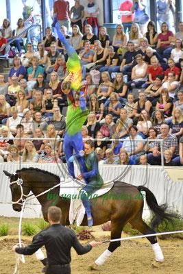 HWR I; LV: Hamburg; Pferd: KCM Vaultinghorses Diavolo of Farms End; Longe: Hendrik Brühl