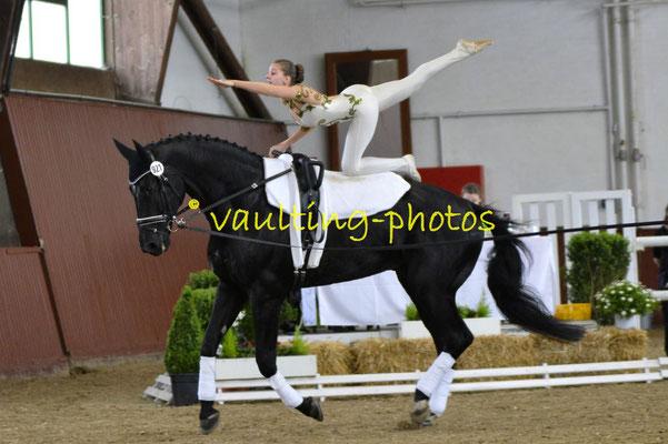 RV Nordheim; LV: Baden-Württemberg; Pferd: Humphrey Bogart; Longe: Andrea Blatz