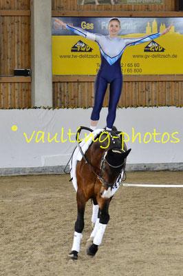 Böhlitz-Ehrenberg II; Pferd: Remus; Longe: Jana Dorn