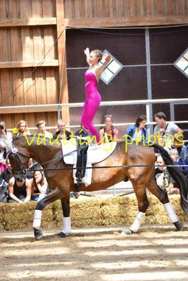 Bendestorf I; LV: Hannover; Pferd: Robin Hood: Longe: Meike König