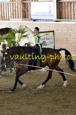 RFV Kulmbach II; Pferd: Sadebo FS; Longe: Ute Gack