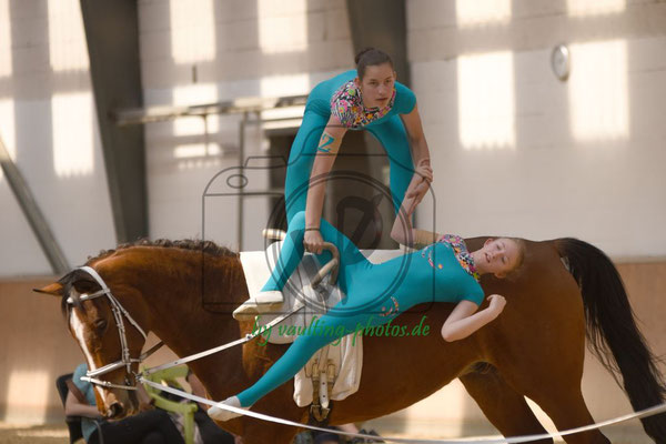Krumke IV; Pferd: Di Salvo; Longe: Dörthe Auerswald